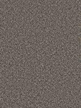 Dream Weaver Simply Blended Premier 9645_679