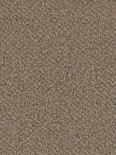 Dream Weaver Simply Blended Bronze 9645_645