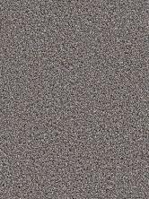 Dream Weaver Simply Blended Steller 9645_634