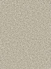 Dream Weaver Dazzling Seashells 4775_758