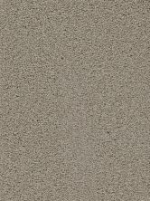 Dream Weaver Soft Touch Taupe 9420_775