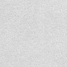 Fabrica Belcarra Wake 151BL516BL