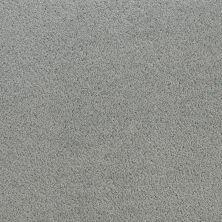 Fabrica Denali SALUTE 210DNDN58