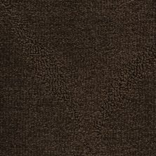 Fabrica Montage Swiss Chocolate 312MTMT01