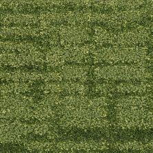 Fabrica Dominique Jaden 534DO692DO