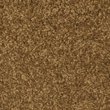 Fabrica Cotton Club Ground Nutmeg 803CTCT16