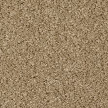 Fabrica Cotton Club Classic Taupe 803CTCT27