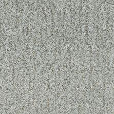 Fabrica Monterey Cypress 806MY635MY