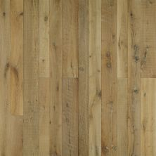 Hallmark Organic 567 Weathered, rustic and aged Chai Oak WTHRCNDGD_CHK