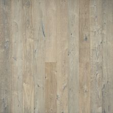 Hallmark True Weathered, rustic and aged Lemon Grass Oak WTHRCNDGD_LMNGRSSK
