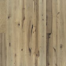Hallmark True Weathered, rustic and aged Orris Maple WTHRCNDGD_RRSMPL