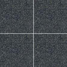 Marazzi D_Segni Terrazzo™ Black DS33-88
