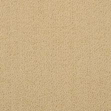 Masland Novellino Wheat 9215374