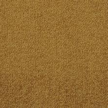 Masland Novellino Bronze 9215393