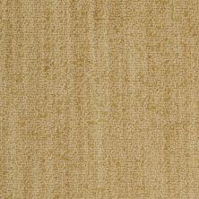 Masland Bellini Bronzo 9221390