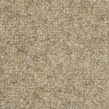 Masland Highland Marble Edge 9250804