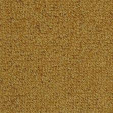 Masland Highland Carina 9250905