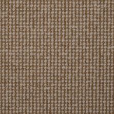 Masland Natural Point Sisal Tweed 9252540