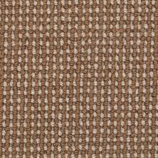 Masland Gallantry Too Driftwood 9260781
