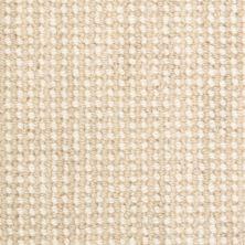 Masland Ambiance Driftwood 9261821