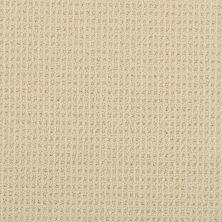 Masland Bandala Para Sand 9352531