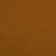 Masland Cache Camel 9408360
