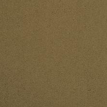 Masland Cache Silver Birch 9408520