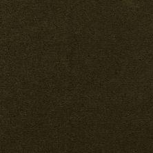 Masland Cache Moss 9408766