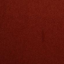 Masland Cache Rouge 9408917