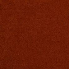 Masland Cache Ginger 9408957