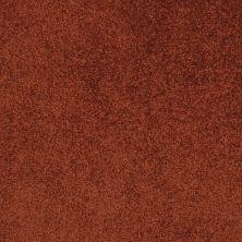Masland Americana Desert Paintbrush 9439981