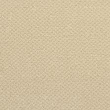 Masland Seurat Cadmium Yellow 9440309
