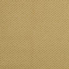Masland Seurat Amber 9440361