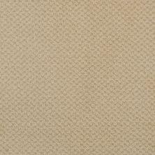 Masland Seurat Adobe 9440526