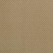 Masland Seurat Tan 9440616