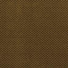 Masland Seurat Sepia 9440652