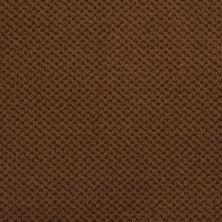 Masland Seurat Burnt Sienna 9440664