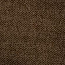 Masland Seurat Vandyke Brown 9440670