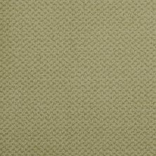 Masland Seurat Celadon 9440737