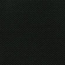 Masland Seurat Deep Emerald 9440790