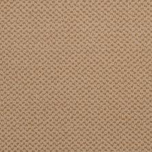 Masland Seurat Apricot 9440912