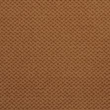 Masland Seurat Copper 9440946