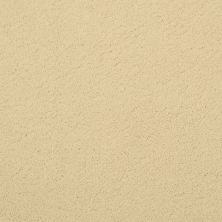 Masland Posh Chanel 9455315