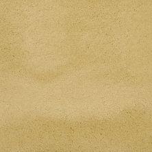 Masland Posh Golden 9455362