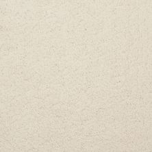 Masland Posh Pearl 9455500