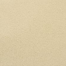 Masland Posh Ambrosia 9455502