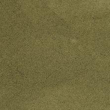 Masland Posh Brocade 9455750