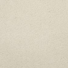 Masland Posh Luminous 9455800
