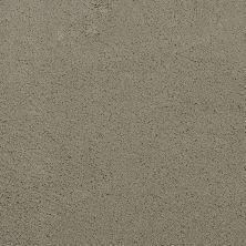 Masland Posh Splendor 9455848