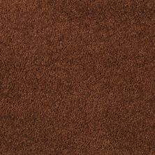 Masland All Spice 9456928